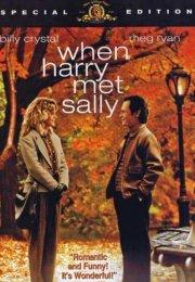 Harry Sally İle Tanışınca Türkçe Dublaj izle